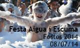 fotogaleria_festa_escuma_2014