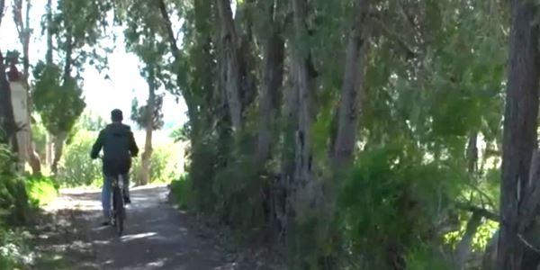 Carril bici de Picanya a À Punt