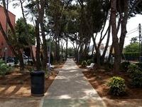 Enjardinament parc Jaume I 2