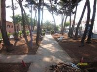 Enjardinament parc Jaume I 3