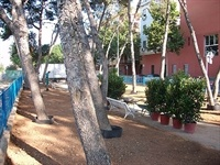 Enjardinament parc Jaume I 4